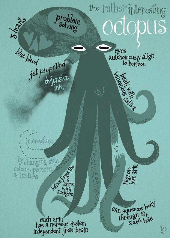 matt-dawson-octopus-facts